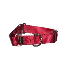 PetSafe Martingale Collar, 3/4-Inch  Red, Small